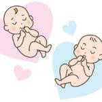 赤ちゃんの性別はいつわかる?判断できる時期と方法